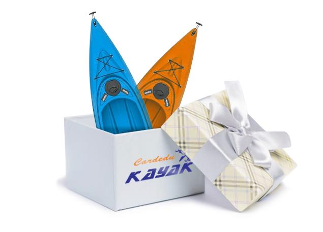 Give a Kayak excursion